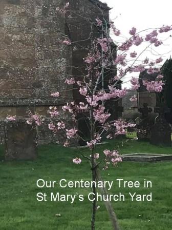 WI Centenary Tree